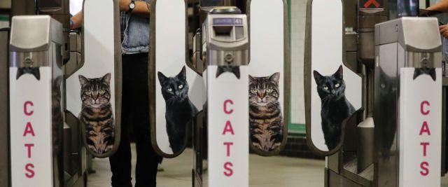 ap_cat_london_subway5_ml_160913_12x5_1600